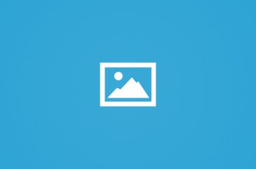 """منظمة حقوقة سويدية تطالب محمود عبّاس بضرورة وقف قانون """" الجرائم الالكترونية"""""""