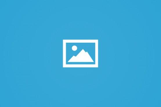 انطلاق معرض الزيتون الأول في نابلس المحتلة