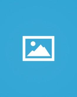 «الأونروا».. عنوان المؤامرة الجديدة