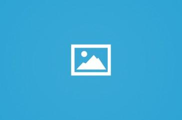 حملة الوفاء الأوروبيّة تتعهد بتقديم مليون دولار أمريكيّ للأونروا