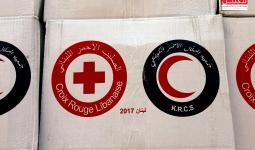 جانب من المساعدات التي وصلت إلى المخيمات الفلسطينية في لبنان