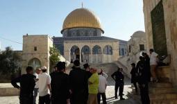 الاحتلال يسمح باستئناف اقتحامات أعضاء