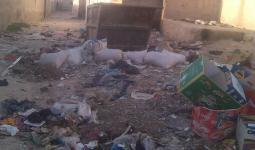 جانب من القمامة المنتشرة في المخيم