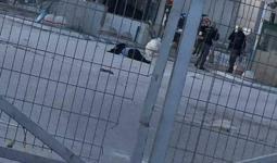 إصابة فلسطينية على حاجز قلنديا شمالي القدس المحتلة عقب إطلاق قوات الاحتلال النار عليها