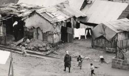 مخيم تل الزعتر قبل المجزرة
