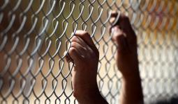 سلطات الاحتلال تفرج عن طفل من مخيم عايدة وطلبة من جامعة بيرزيت