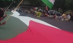 الفلسطينيون في هولندا يرفعون أكبر علم فلسطيني في أوروبا