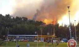 حريق في حيفا (الصور من وكالة معا)