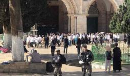 اعتداءات واعتقالات وسط اقتحامات واسعة للمسجد الأقصى