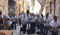 مستوطنون يقتحمون المسجد الأقصى.. ومسيرة رفع أعلام في القدس المحتلة