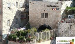 مركز زور فلسطين