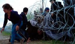 ألمانيا: حصول 100 لاجئ سوري على صفة