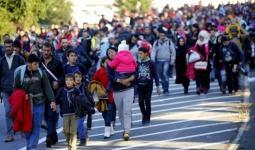 المرصد الأورومتوسطي يعرب عن قلقه من عدم منح ألمانيا