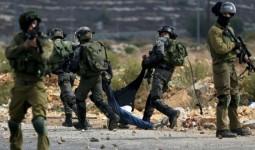 المستوطنون وقوات الاحتلال.. اعتقالات واعتداءات وتجريف في الضفة المحتلة