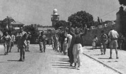 الرملة: مواطنون عرب أسرهم الجيش الإسرائيلي، عام 1948 (مكتب الصحافة الحكومي الإسرائيلي)