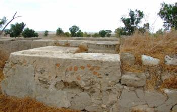 قرية بيت عفا المهجرة